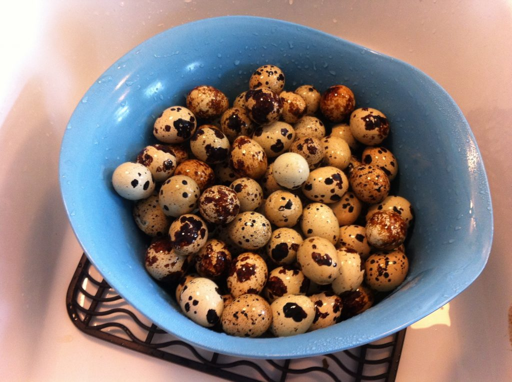 A bowl of quail eggs