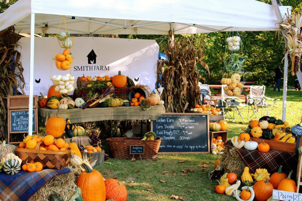 Smith Farm Fall Display